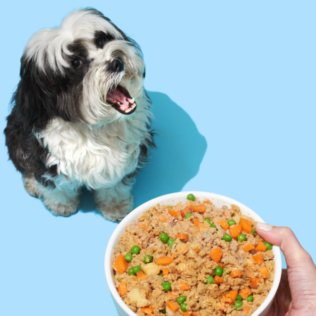 pet-plate